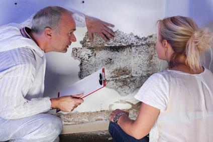 Geliebte Eternit Asbest | Test Asbest &AJ_32