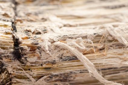 asbest-Schwachgebunden-asbestfasern